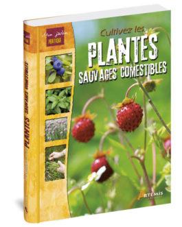 Cultivez les plantes sauvages comestibles